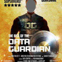Who is the Data Guardian?