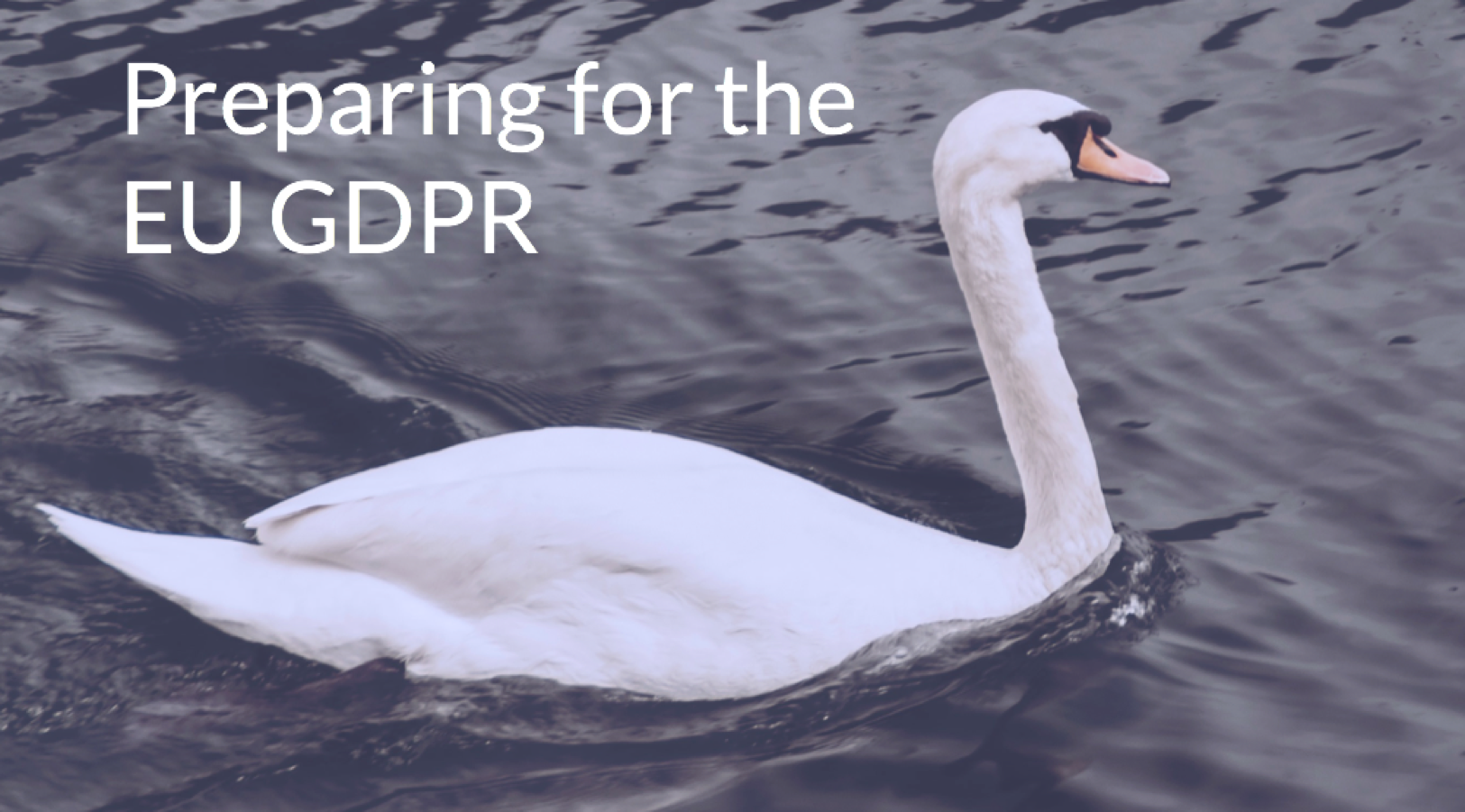 Get a Complete Guide to Preparing  for the EU GDPR