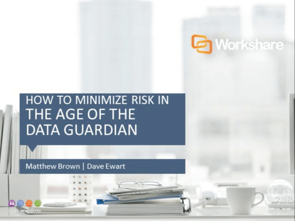 How to Minimize Risk in 'The Age of the Data Guardian'