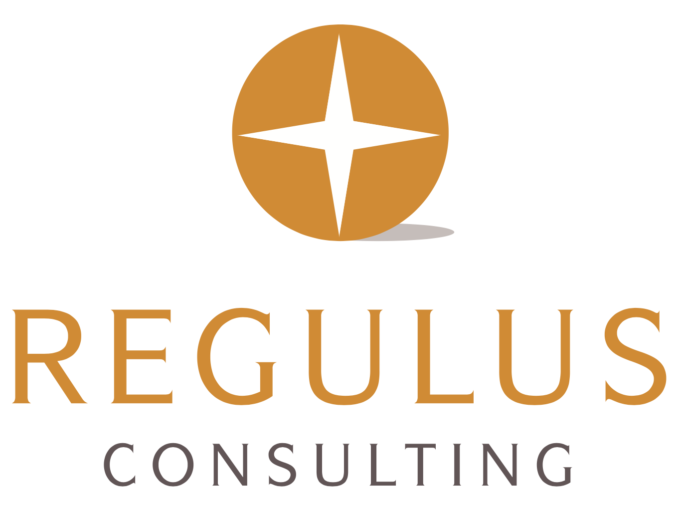 Regulus Consulting GmbH