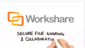 Secure File Sharing and Collaboration